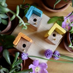 Tiny Homes for Bees- Triple Apartments